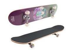 Skateboard-Lion-Instinct_12163